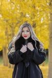 Beau Posing In modèle blond un champ des feuilles jaunes Images libres de droits