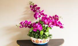 Beau pot de fleur Image stock
