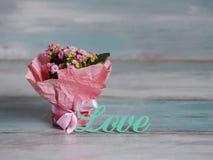 Beau pot de fleurs enveloppées en papier rose, cadeau Avec amour Photo stock