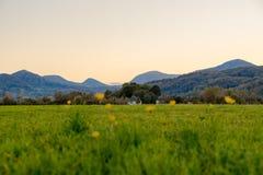 Beau pré alpin dans une vallée de montagne au coucher du soleil Image libre de droits