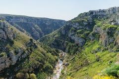 Beau pré de vallée d'herbe verte avec la montagne et la couleur de roche Photo libre de droits