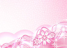 Beau rosâtre Image libre de droits