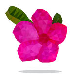 Beau rose de désert Rose Flower, bas polygone Photo libre de droits