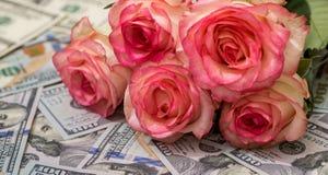 Beau rose et argent Photos libres de droits