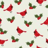 Beau sans couture d'oiseau cardinal Photos libres de droits