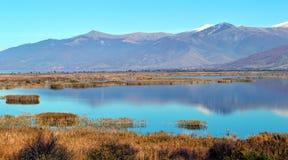 Beau scape de lac Photos libres de droits