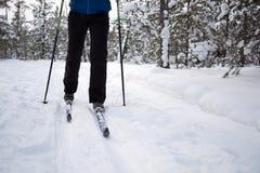 Beau ski de fille dans les bois Photos libres de droits