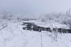 Beau snowsacpe Images stock