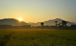 Beau soleil le temps de matin Image libre de droits