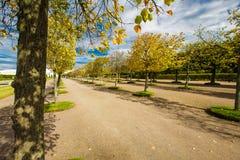 Beau stationnement d'automne Images libres de droits