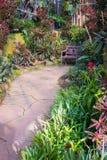 Beau style tropical de l'Asie avec l'idée verte de jardin de couleur rouge avec la chaise en bois, le revêtement bétonné et le mu Photographie stock