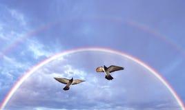Beau symbole de colombes de la foi Image stock