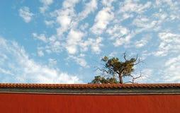 Beau temps à Pékin Image libre de droits