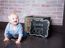 Beau Turns One Year Old imagen de archivo libre de regalías
