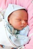 Beau un vieux bébé de semaine en sommeil Photos libres de droits