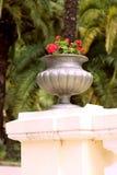 Beau vase à style Antic de la Grèce avec des fleurs Photo libre de droits