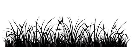 beau vecteur de silhouette de pré d'herbe Images stock