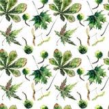 Beau vert de fines herbes floral lumineux graphique merveilleux mA d'automne Photographie stock