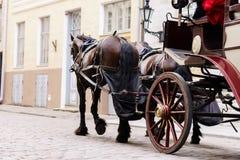Beau vieux divan dans la vieille ville Image stock