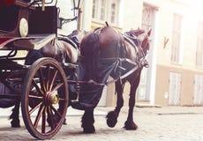 Beau vieux divan dans la vieille ville Voyageant, romance, concep d'amour Images libres de droits