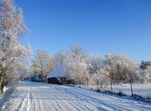 Beauatiful country road in snowy winter Stock Image