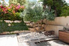 Beauatiful klasyczny Śródziemnomorski ogród Fotografia Royalty Free