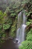 Beauchamp siklawa w luksusowym tropikalnym lesie deszczowym Fotografia Royalty Free