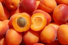Beaucoup abricot Image stock