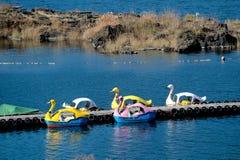 Beaucoup couleur des bateaux comme un canard sont restés dans le lac photos libres de droits