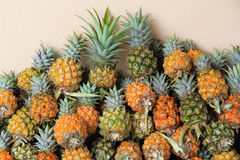 Beaucoup d'ananas Photo stock