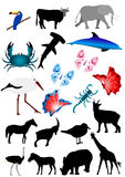 Beaucoup d'animaux Images stock