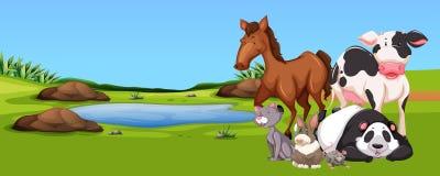 Beaucoup d'animaux par l'étang illustration de vecteur