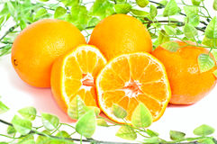 Beaucoup d'oranges image stock