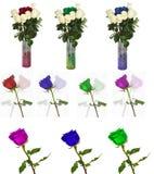 Beaucoup de belles roses sans fond, roses de fleurs d'isolement dans de grands nombres Photos stock