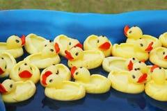 Beaucoup de canards de jaune flottant dans la piscine Image stock