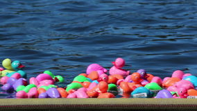 Beaucoup de canards en caoutchouc heureux dans la course sur la rivière banque de vidéos