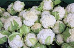 Beaucoup de choux-fleurs à vendre dans la stalle de marchands de légumes Photographie stock