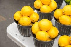 Beaucoup de citrons dans un panier images libres de droits