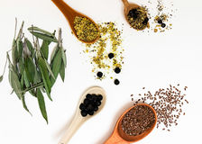 Beaucoup de différentes herbes médicinales dans des cuillères en bois sur un fond blanc d'isolement Photo libre de droits