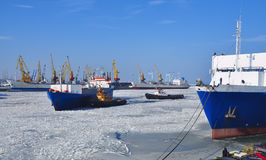 Beaucoup de différents bateaux dans le port pendant l'hiver Image libre de droits