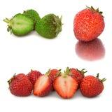 Beaucoup de différents ensembles de fraises sur le fond blanc, isolat avec des fraises, beaucoup différentes sur une feuille Image stock