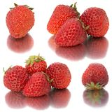 Beaucoup de différents ensembles de fraises sur le fond blanc, isolat avec des fraises, beaucoup différentes sur une feuille Images libres de droits