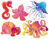 Beaucoup de différents mammifères de mer Images stock