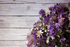 Beaucoup de différents types de fleurs : phlox pourpre et violet, marguerite blanche, cloches roses Image libre de droits
