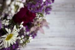 Beaucoup de différents types de fleurs : phlox pourpre et violet, différents types whiteMany de fleurs : phlox pourpre et violet, Image libre de droits