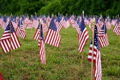 Beaucoup de drapeaux américains Photographie stock