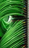 Beaucoup de fils de réseau reliés au serveur Photo stock