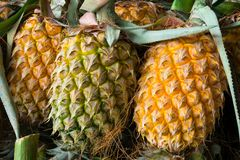 Beaucoup de fond de fruit d'ananas photo stock