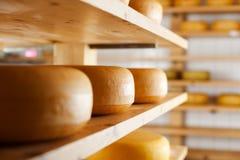 Beaucoup de fromage-roues mûrissant sur des étagères photo stock