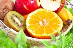 Beaucoup de fruits dans le panier Images stock